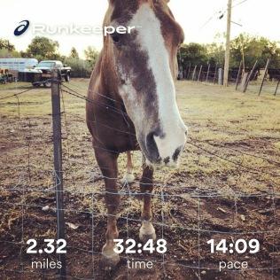 Run streak - day 11