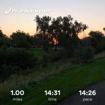 Run streak - day 15