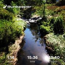 Run streak - day 14