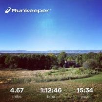 Run streak - day 17